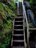 escaliers de bois de l'ile aux amours