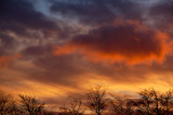 27th January 2008  January skyburst