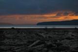 Skagit Bay near La Conner