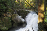 Whatcom Falls in Winter