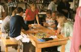 Perseids 1983, Buurse