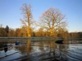 Winter 2011/2012, De Bilt, Houdringe