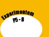 CONSERVACIÓ P5-B