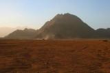 9492 Camels in Desert.jpg