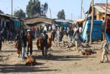 1224 Market in Dabat.jpg