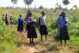 4396 Curious Ugandan school kids.jpg