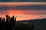 4486 Sunset Lake QE Nat Park.jpg