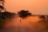 4536 Dusty sunrise QE Nat Park.jpg