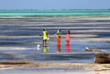 7064 Girls Jambiani Zanzibar.jpg