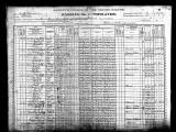 1900 US Census: Hawkins, Mabe, Shelton