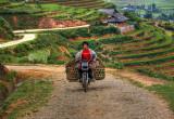 North Vietnam 2011