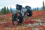 378    Laura touring Canada - Trek 7900 touring bike