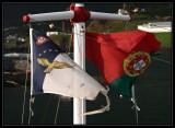 Azores 2007