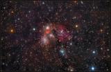 NGC 2170 REGION