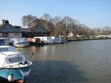 February 2010 - Two Safaris at Beccles
