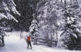 Skiing in Nordmarka, Oslo