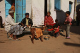 Palanpur street scene.jpg
