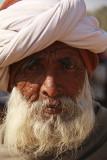 Around Palanpur 13.jpg