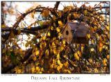07Nov05 Dreamy Fall Birdhouse - 7216