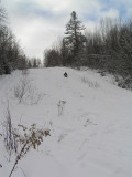 The steepest sledding hill in town...that's Dale.