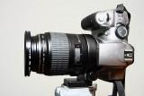 Photos with Canon 100mm Macro