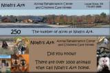 Noah's Ark March 2012