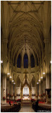 Saint Patrick's Cathedral 4