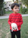 Another newborn stray, Delhi 2011