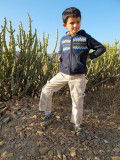 King of Cactus Hill
