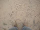 Elephant footprint, Corbett National Park (April 2012)