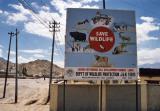 Save Wildlife (Leh)