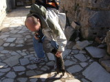 Cat attack on the steets of Ephesus.  Take me home with you.
