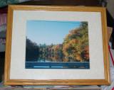framed_pictures_for_sale