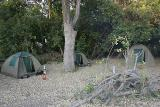 Our tents at the fly camp on the island - mine is the tiny one