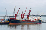 Houston Ship Channel Safmarine Douala 01