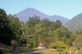 Gunung Gede, Java, Indonesia, August 2012