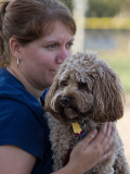 CockaPoo with Mom