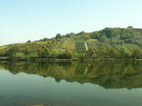 along_the_mosel