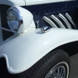 Roller detail 1