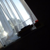Early morning view from my pillow