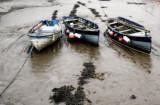 Dream-boats