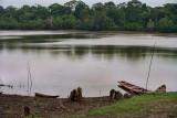 Pacaya - Samiria National Reserve in Amazon Basin  - Peru 2011