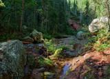 Whitewater Creek, upstream