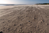 Sand Swept Beach