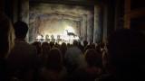 Swan Lake - final curtain