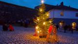 Windy Christmas tree