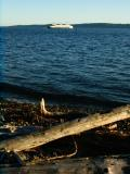 Fauntleroy Ferry