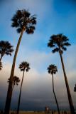 Californie 2012