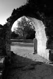 Bolton Abbey  10_DSC_7385