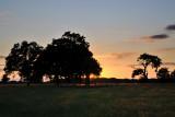 Windsor Park  11_DSC_3554